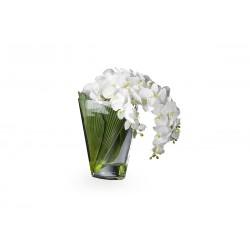 Букет белых орхидей в стеклянной вазе VG (Италия)