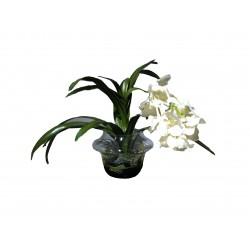 Белая орхидея в стеклянной вазе VG (Италия)