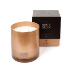 SCENTED CANDLE IN GLASS GLOIRE/METAL-L